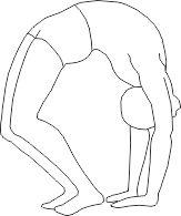 Гимнастика для спины поза колеса
