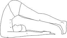 Гимнастика для спины поза плуга